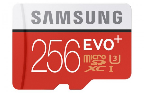 Carte microSD EVO Plus 256Go
