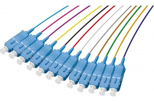 Pigtail Os2 Sc/Upc Lsoh 12 Connecteurs- 1M
