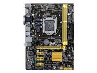 ASUS H81M-PLUS - carte-mère - micro ATX - Socket LGA1150 - H81