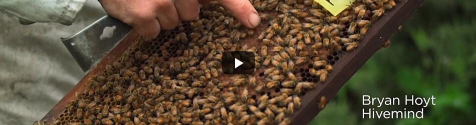 vidéo agriculture